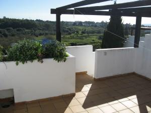 roof-terrace