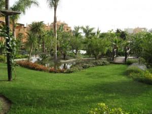 campanario-community-gardens