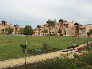 communal-garden